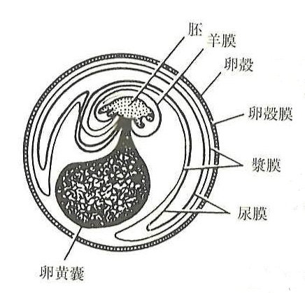 Tecumseh 6 5 Hp Engine Diagram additionally 10 Tips Om Tijd Te Vinden Om Te Bloggen in addition 820 Barrido Puertas En Vestibulos De besides Ulta Salon Cosmetics Fragrance together with 1820928. on 820