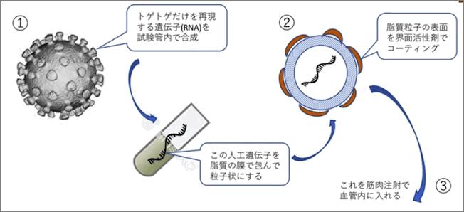 okada-vaccine-001