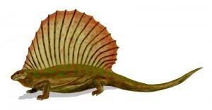 Edaphosaurus_BW